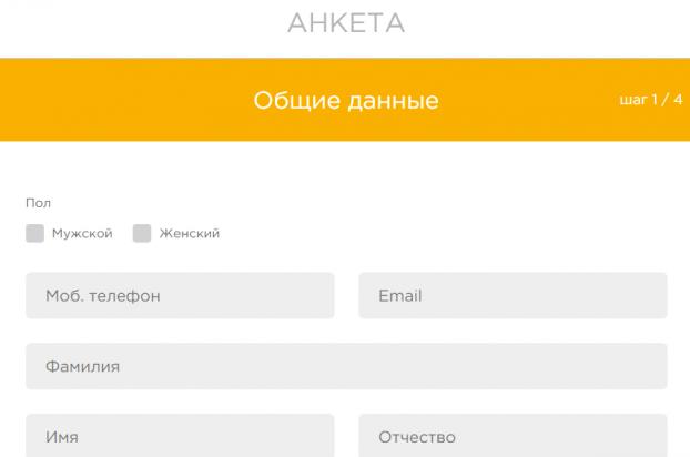 Заполнение анкеты заёмщика на сайте aLTenge